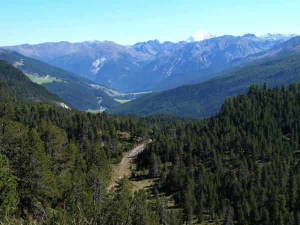 Schweizer Nationalpark Ofenpass mit Ortler